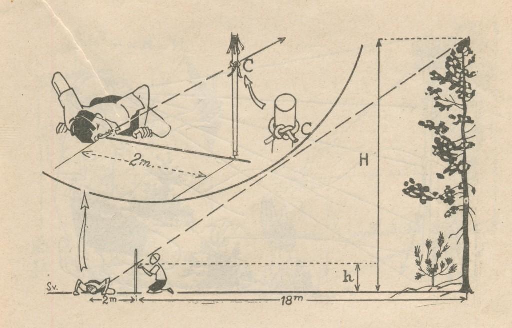 Bâton pour mesurer les hauteurs