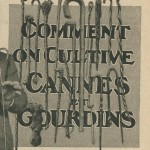 Comment on cultive cannes et gourdins