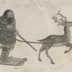 Aino avec bâton tiré par un renne