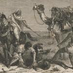 chasse à l'autruche
