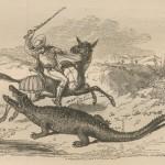 chasse au crocodile avec un bâton
