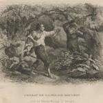 Combat de Boulton avec un orang-outang