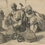 Marchands d'oiseaux hindous en 1860