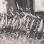 Baguettes porte-harengs à Munich en 1910 -détail