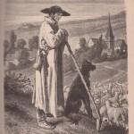 Un berger d'Alsace