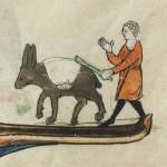 Anier et son bâton