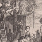 Récolte des fruits en Suisse en 1851 - détail